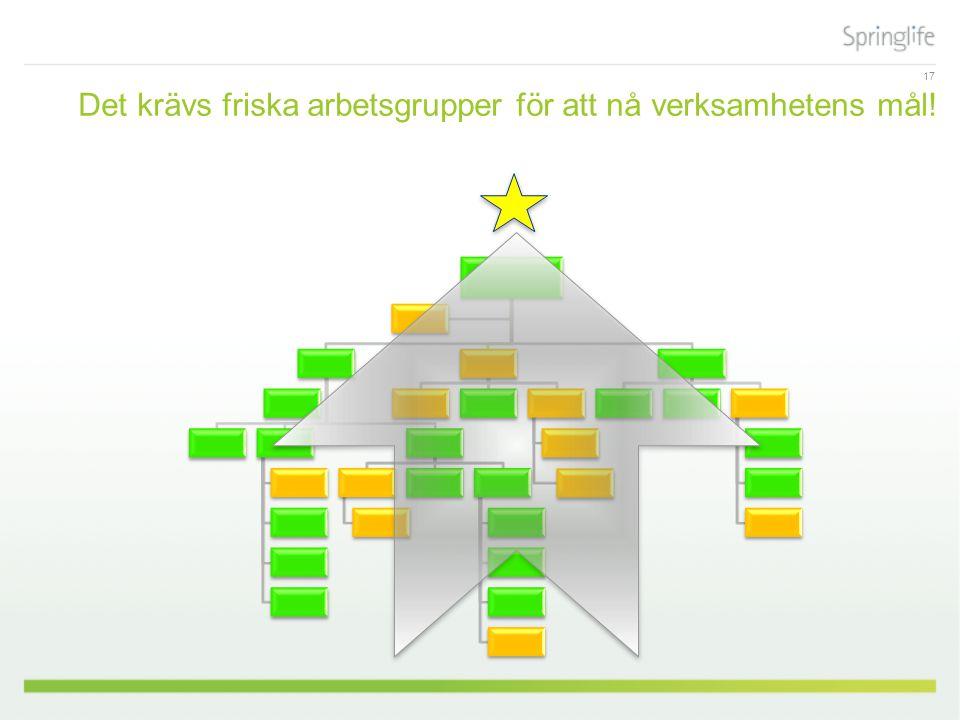 Det krävs friska arbetsgrupper för att nå verksamhetens mål! 17