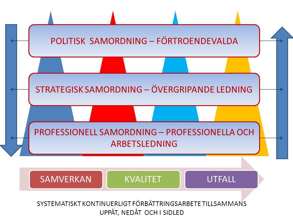 POLITISK SAMORDNING – FÖRTROENDEVALDA STRATEGISK SAMORDNING – ÖVERGRIPANDE LEDNING PROFESSIONELL SAMORDNING – PROFESSIONELLA OCH ARBETSLEDNING SAMVERK