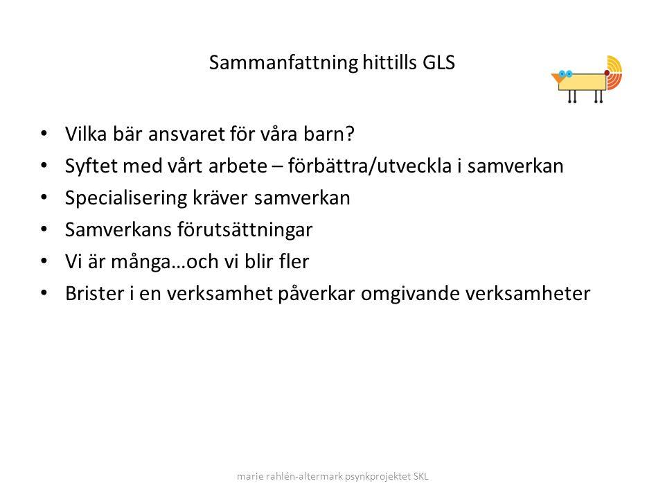 Sammanfattning hittills GLS Vilka bär ansvaret för våra barn? Syftet med vårt arbete – förbättra/utveckla i samverkan Specialisering kräver samverkan