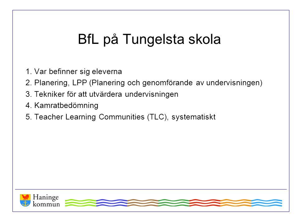BfL på Tungelsta skola 1. Var befinner sig eleverna 2. Planering, LPP (Planering och genomförande av undervisningen) 3. Tekniker för att utvärdera und