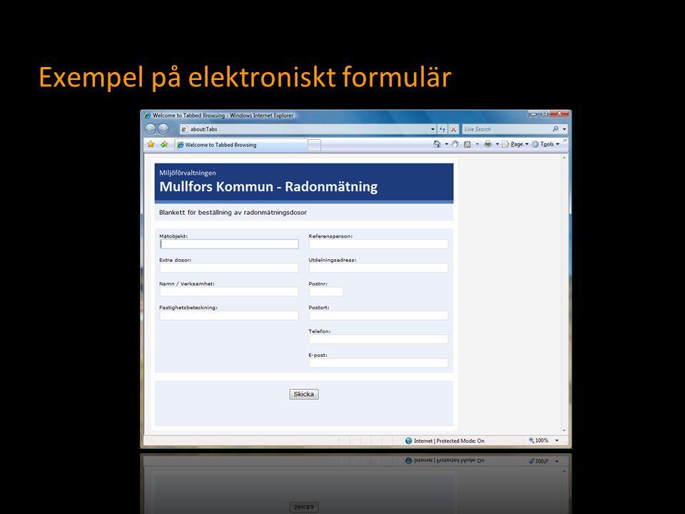 Exempel på elektroniskt formulär
