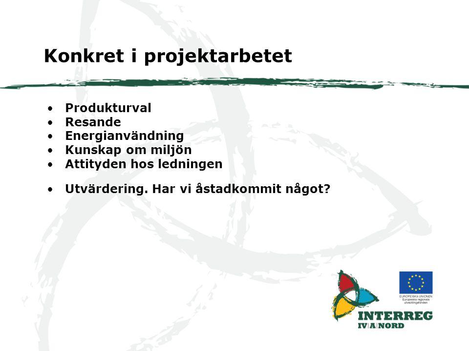Produkturval Resande Energianvändning Kunskap om miljön Attityden hos ledningen Konkret i projektarbetet Utvärdering.