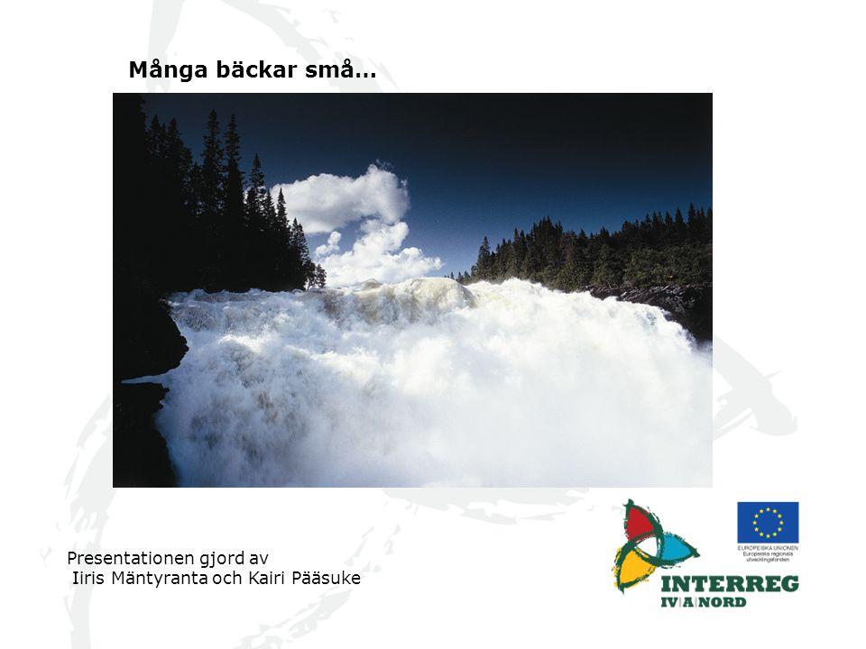 Många bäckar små… Presentationen gjord av Iiris Mäntyranta och Kairi Pääsuke