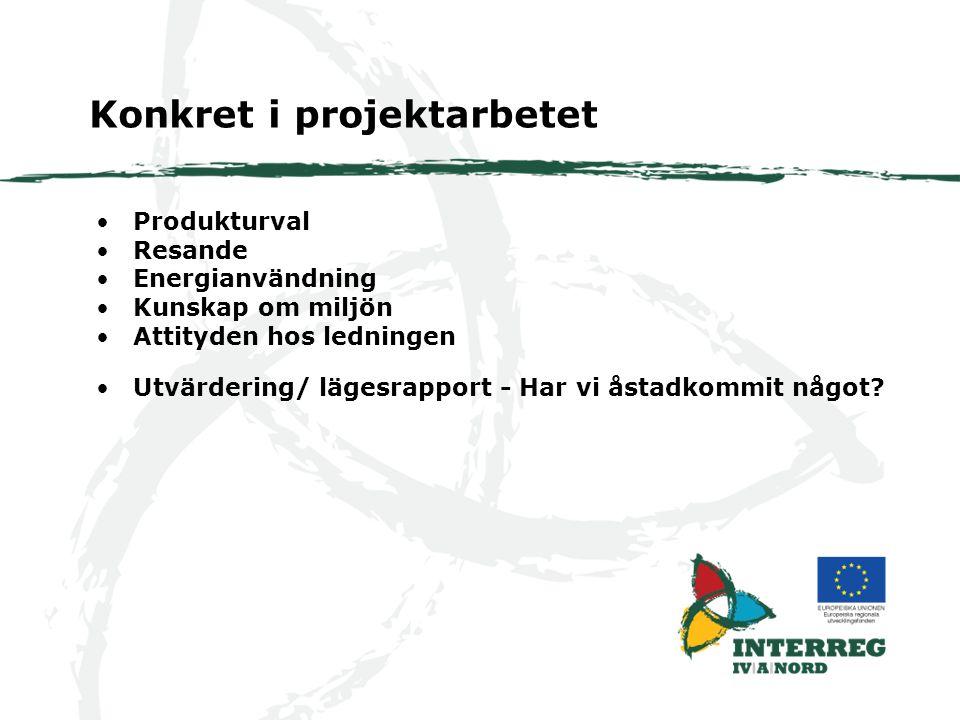 Produkturval Resande Energianvändning Kunskap om miljön Attityden hos ledningen Konkret i projektarbetet Utvärdering/ lägesrapport - Har vi åstadkommit något?