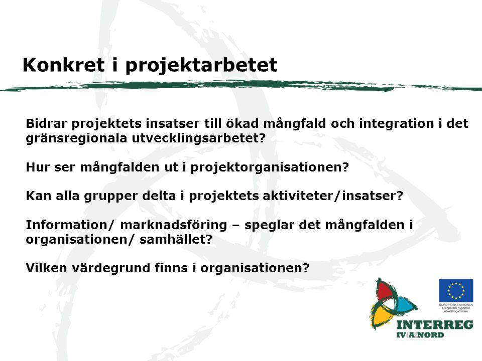 Bidrar projektets insatser till ökad mångfald och integration i det gränsregionala utvecklingsarbetet.