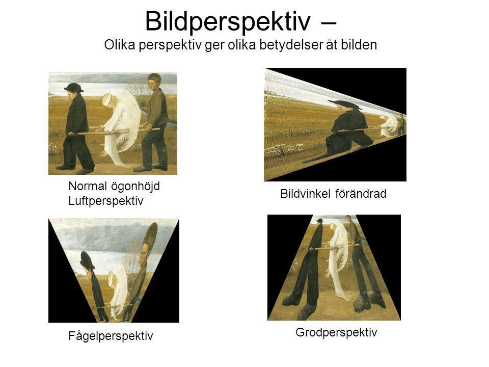 Bildperspektiv – Olika perspektiv ger olika betydelser åt bilden Grodperspektiv Fågelperspektiv Bildvinkel förändrad Normal ögonhöjd Luftperspektiv