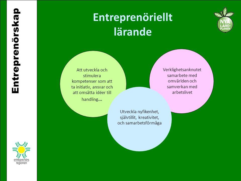Entreprenörskap Entreprenöriellt lärande Att utveckla och stimulera kompetenser som att ta initiativ, ansvar och att omsätta idéer till handling … Utv