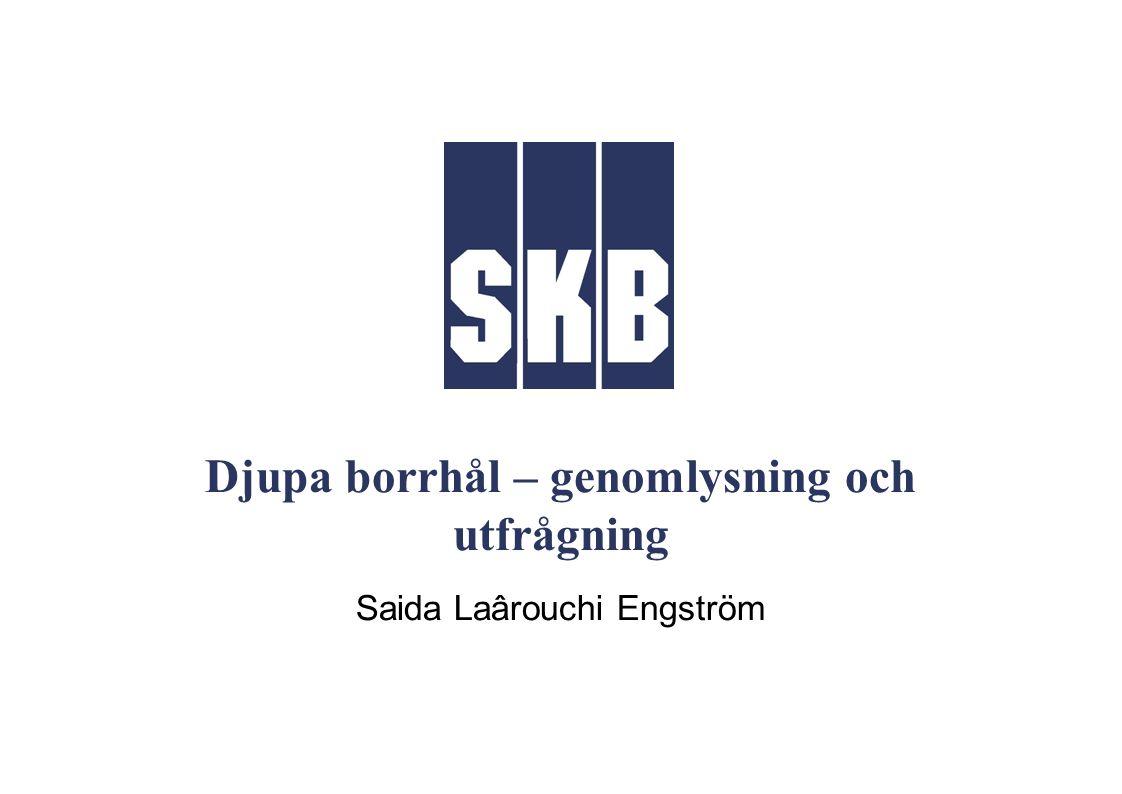 Djupa borrhål – genomlysning och utfrågning Saida Laârouchi Engström