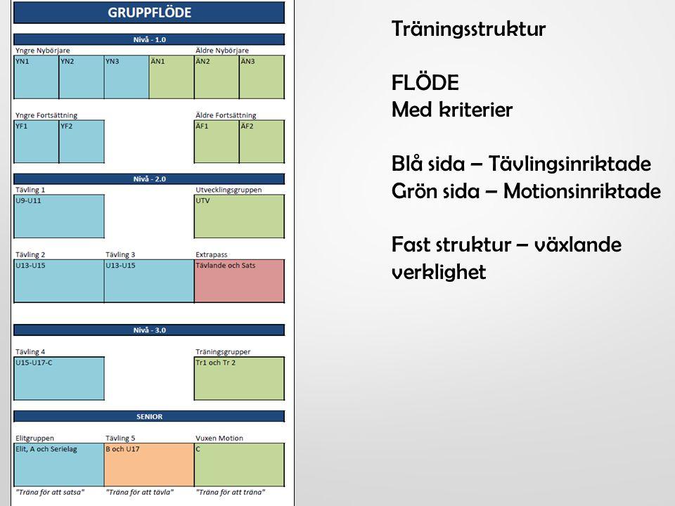 Träningsstruktur FLÖDE Med kriterier Blå sida – Tävlingsinriktade Grön sida – Motionsinriktade Fast struktur – växlande verklighet