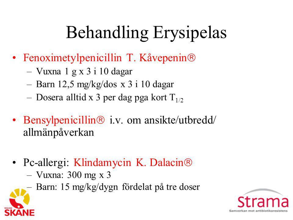 Behandling Erysipelas Fenoximetylpenicillin T. Kåvepenin  –Vuxna 1 g x 3 i 10 dagar –Barn 12,5 mg/kg/dos x 3 i 10 dagar –Dosera alltid x 3 per dag pg