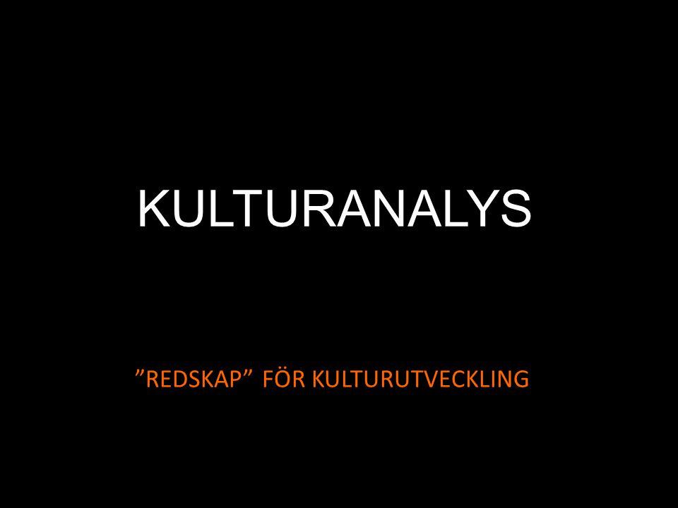 """KULTURANALYS """"REDSKAP"""" FÖR KULTURUTVECKLING"""
