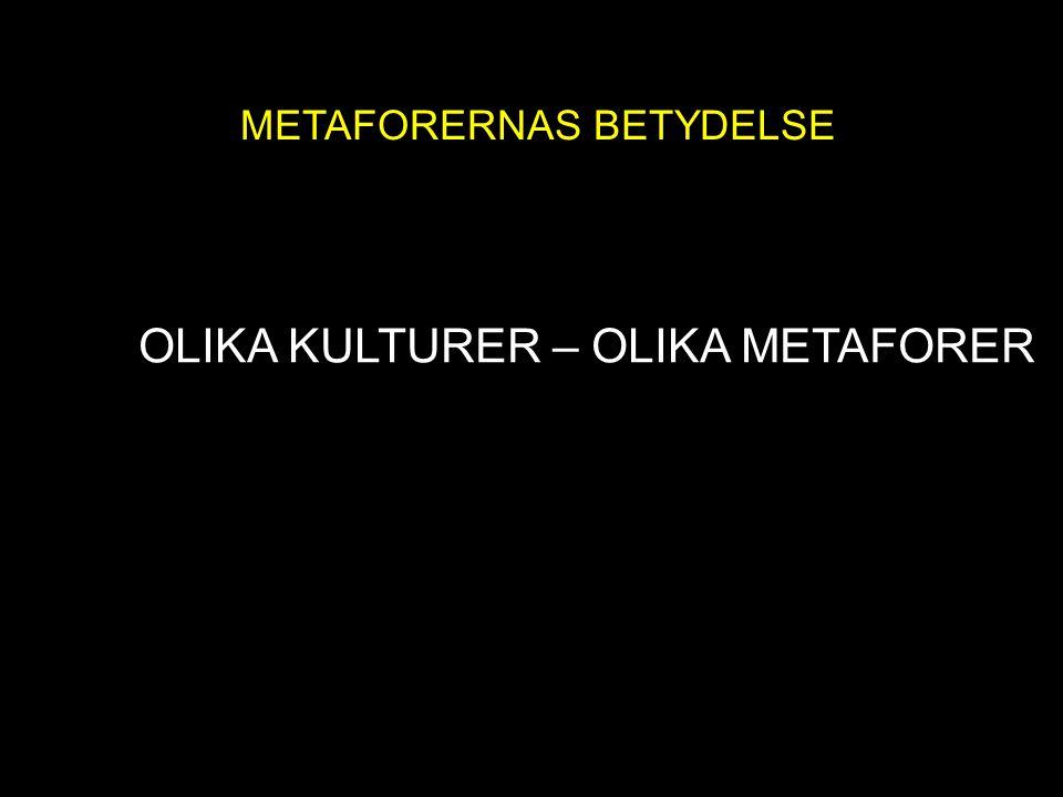 METAFORENS MAKT METAFORERNAS BETYDELSE OLIKA KULTURER – OLIKA METAFORER