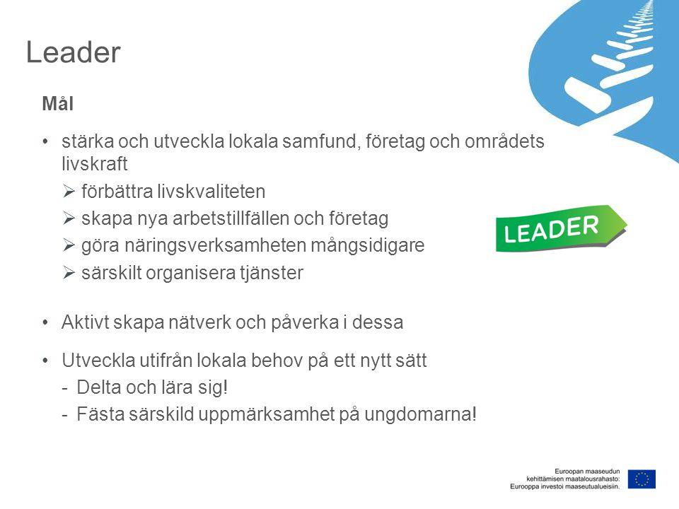 Leader Mål stärka och utveckla lokala samfund, företag och områdets livskraft  förbättra livskvaliteten  skapa nya arbetstillfällen och företag  göra näringsverksamheten mångsidigare  särskilt organisera tjänster Aktivt skapa nätverk och påverka i dessa Utveckla utifrån lokala behov på ett nytt sätt -Delta och lära sig.