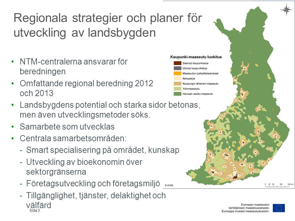 Regionala strategier och planer för utveckling av landsbygden NTM-centralerna ansvarar för beredningen Omfattande regional beredning 2012 och 2013 Landsbygdens potential och starka sidor betonas, men även utvecklingsmetoder söks.