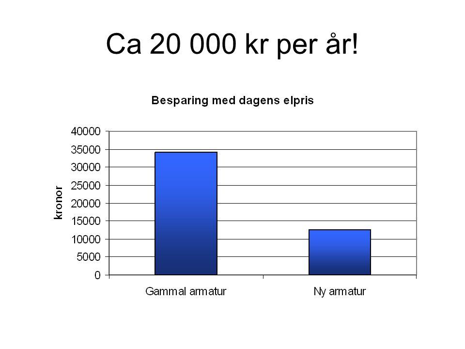 Ca 20 000 kr per år!