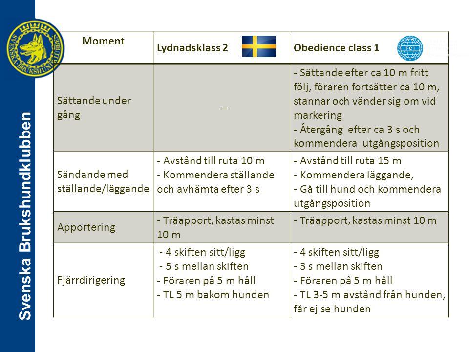 Svenska Brukshundklubben Moment Lydnadsklass 2Obedience class 1 Sättande under gång  - Sättande efter ca 10 m fritt följ, föraren fortsätter ca 10 m,