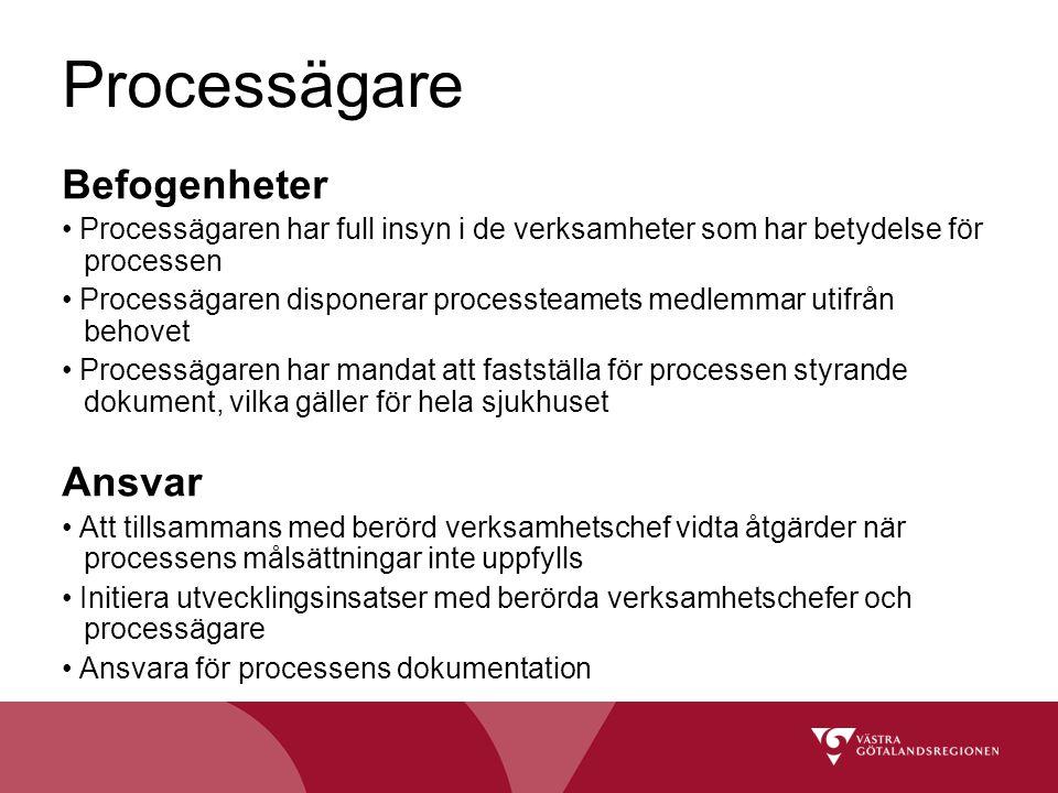 Processägare Befogenheter Processägaren har full insyn i de verksamheter som har betydelse för processen Processägaren disponerar processteamets medle