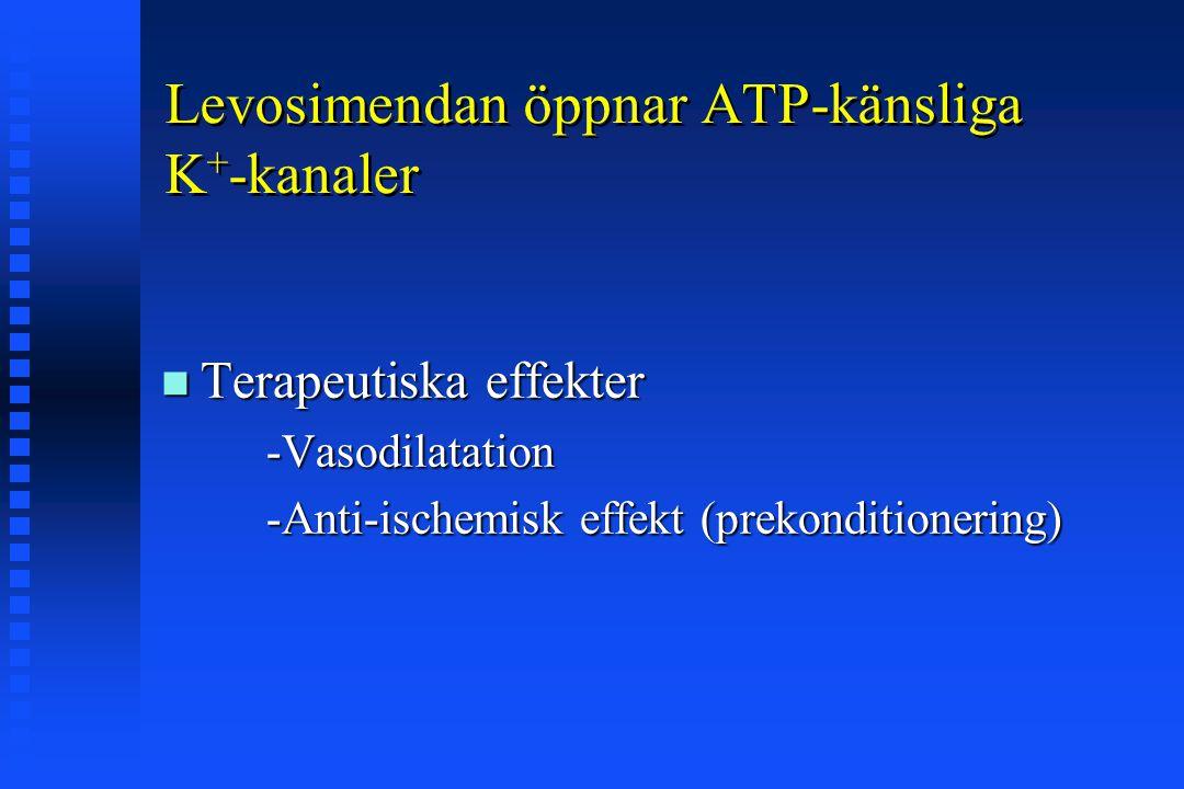 Levosimendan öppnar ATP-känsliga K + -kanaler Terapeutiska effekter Terapeutiska effekter -Vasodilatation -Vasodilatation -Anti-ischemisk effekt (prek