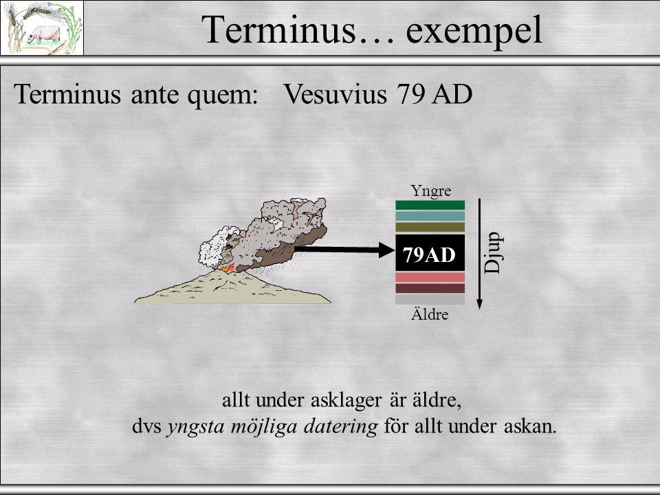 Terminus… exempel Terminus ante quem:Vesuvius 79 AD Äldre Yngre Djup 79AD allt under asklager är äldre, dvs yngsta möjliga datering för allt under askan.