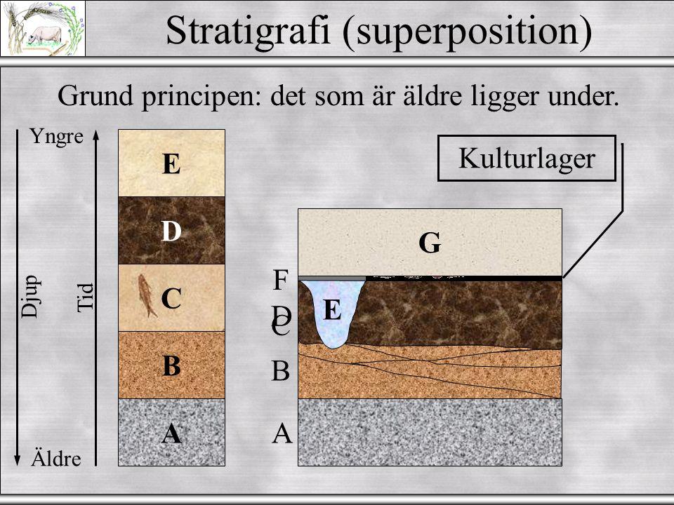 Law of Superposition Stratigrafi (superposition) Grund principen: det som är äldre ligger under.