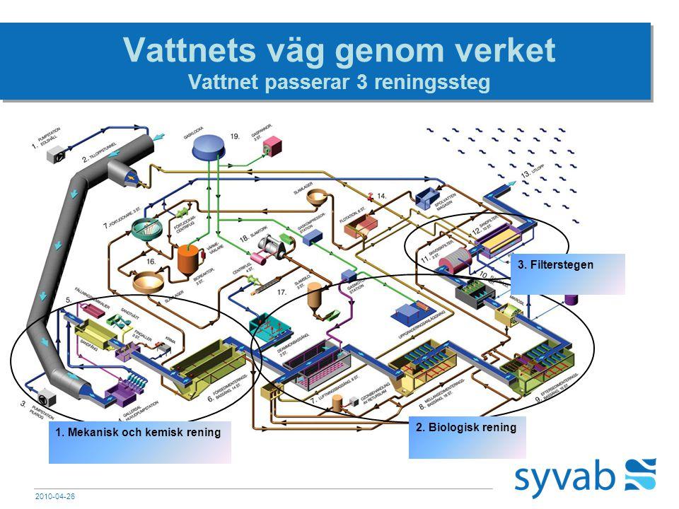 2010-04-26 Vattnets väg genom verket Vattnet passerar 3 reningssteg 2. Biologisk rening 3. Filterstegen 1. Mekanisk och kemisk rening