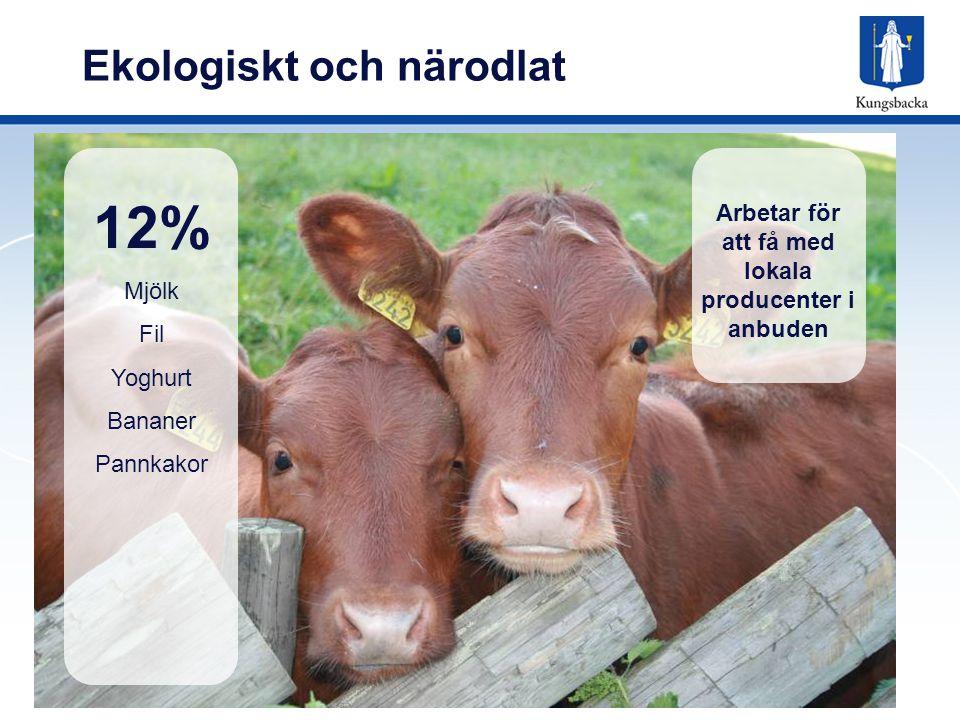 Ekologiskt och närodlat 12% Mjölk Fil Yoghurt Bananer Pannkakor Arbetar för att få med lokala producenter i anbuden