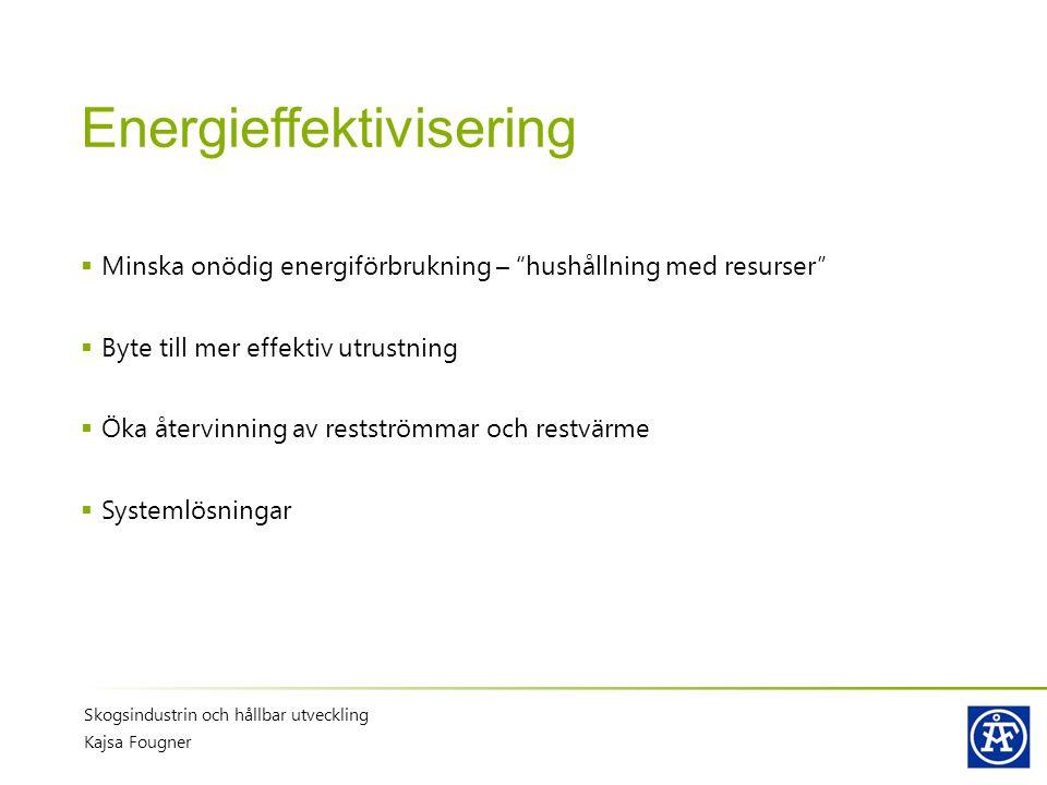 """Energieffektivisering  Minska onödig energiförbrukning – """"hushållning med resurser""""  Byte till mer effektiv utrustning  Öka återvinning av restströ"""