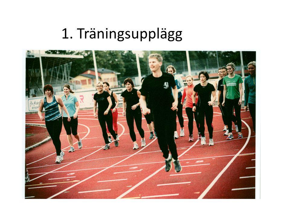 -Distansträning = lugn jogg, aktiv återhämtning, muskulär uthållighet - Långpass = längre distansträning (2-3 h) - Intervallträning = tidsindelad träning, kapacitetsförbättrande Total löpträning bör innehålla - Balans/stabilitet = skadeförebyggande träning -Rörlighet = skade och kapacitetsshöjande träning - Styrka = kapacitethöjande träning