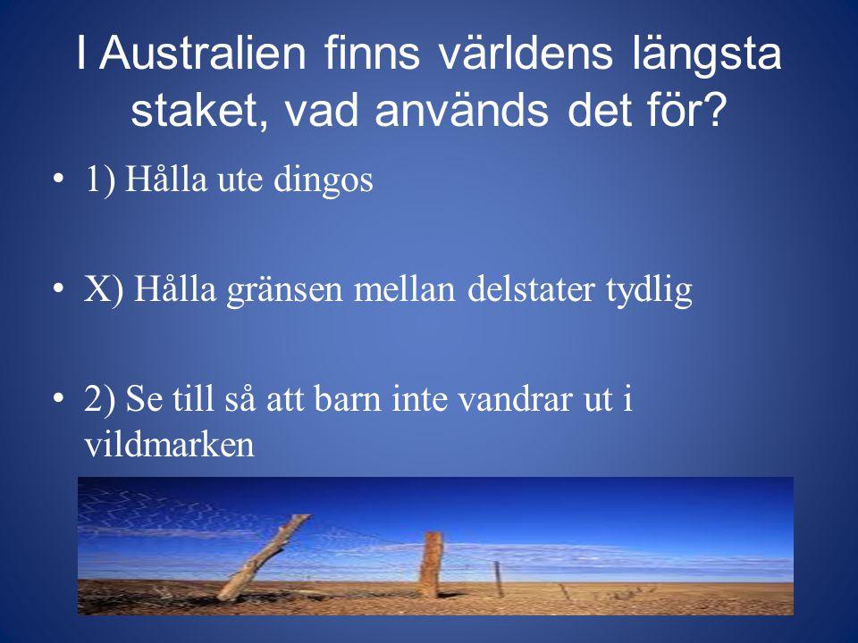 I Australien finns världens längsta staket, vad används det för? 1) Hålla ute dingos X) Hålla gränsen mellan delstater tydlig 2) Se till så att barn i
