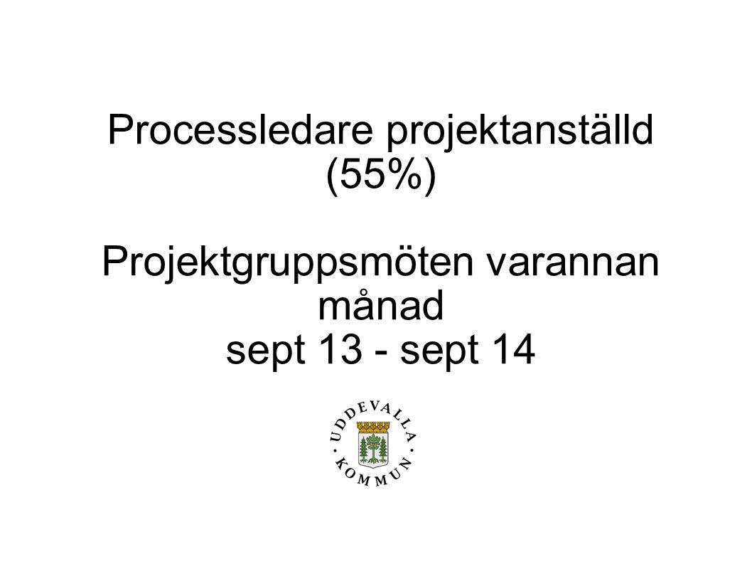 Processledare projektanställd (55%) Projektgruppsmöten varannan månad sept 13 - sept 14