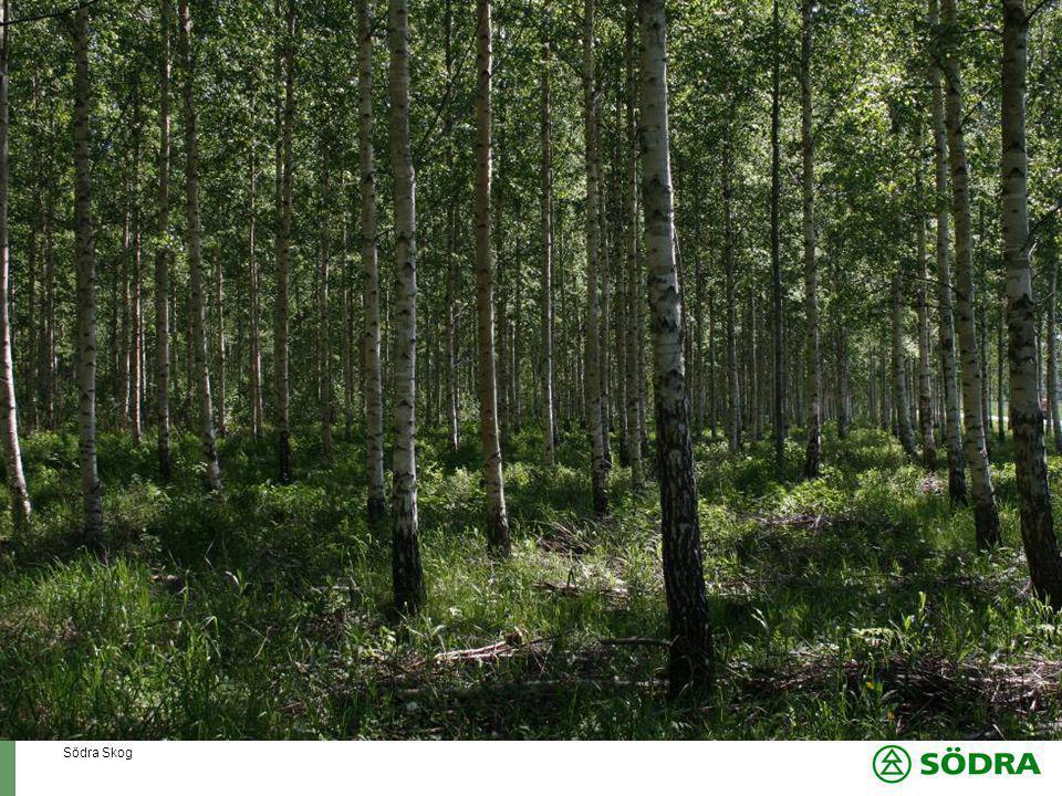 Södra Skog Ansvaret måste vara tydligt, kommunikation är A och O  Skotarföraren har nyckelrollen  Stock med kvarvarande kvist måste läggas ut vid avlägget för justering  Vid manuell avverkning finns kvist på undersidan nedslagen i marken  Vid maskinell avverkning finns ofta kviststumpar med spetsig vinkel