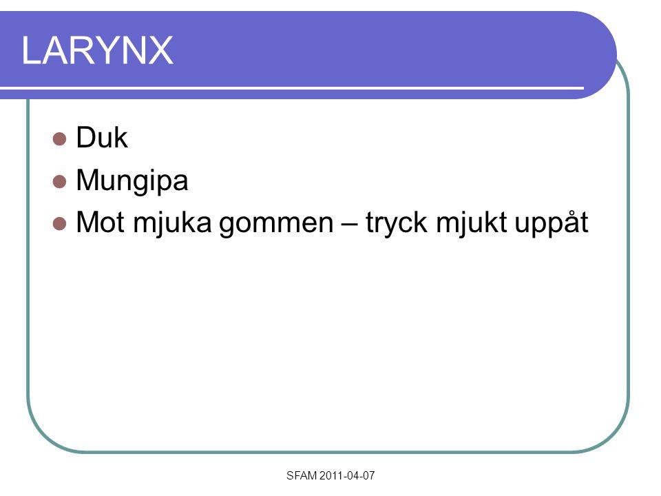 SFAM 2011-04-07 LARYNX Duk Mungipa Mot mjuka gommen – tryck mjukt uppåt