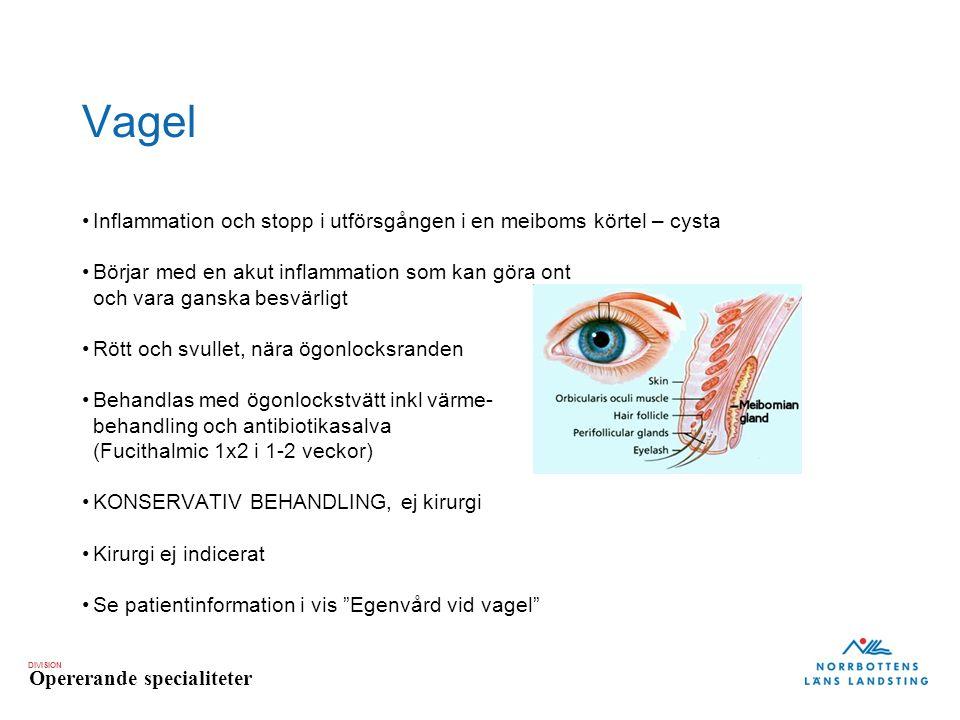 DIVISION Opererande specialiteter Vagel Inflammation och stopp i utförsgången i en meiboms körtel – cysta Börjar med en akut inflammation som kan göra