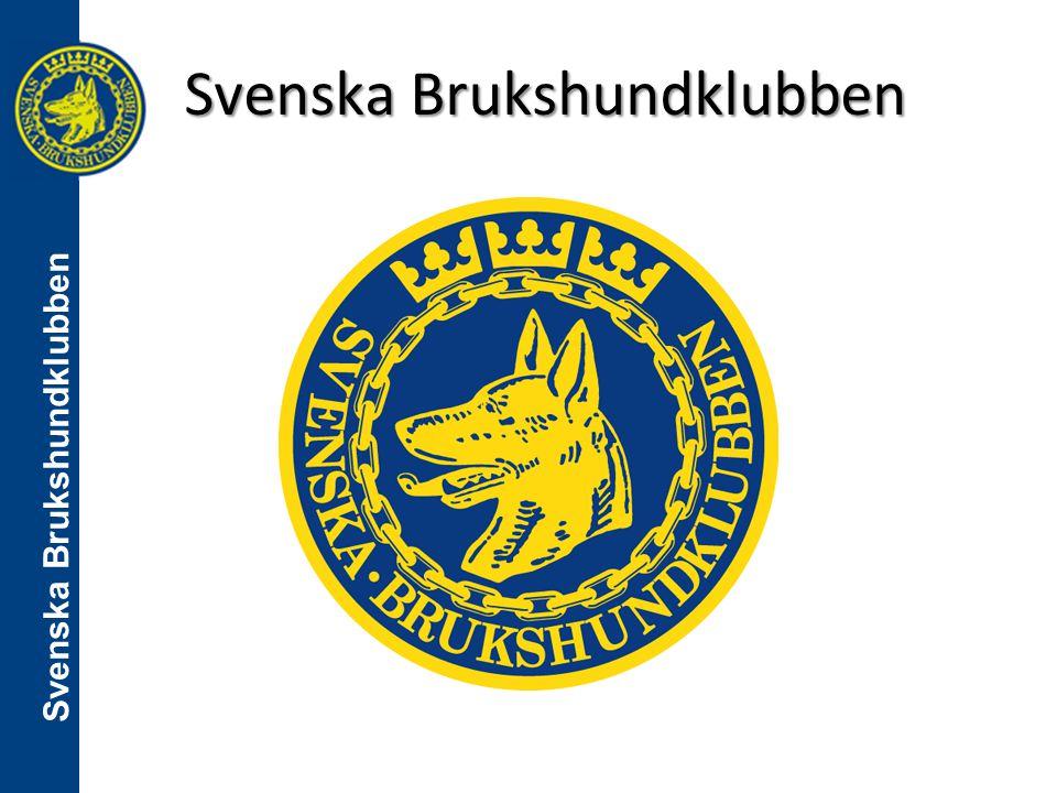 Skillnader mellan svensk lydnadsklass 3 och internationell Obedience class 2 UG lydnad SBK Regelkonferens 15-16 nov 2014