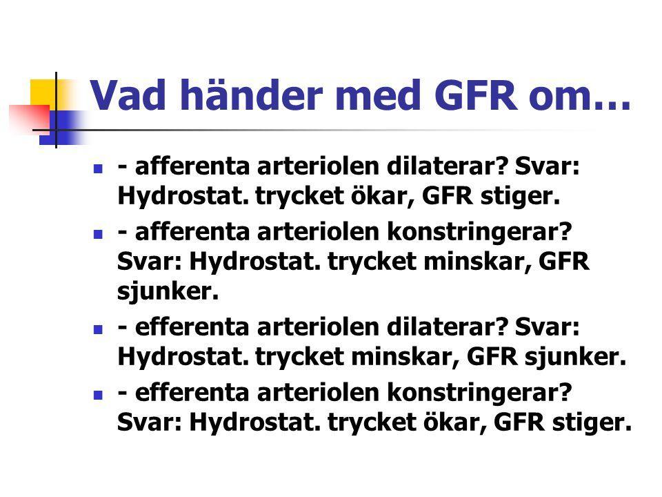 Vad händer med GFR om… - afferenta arteriolen dilaterar? Svar: Hydrostat. trycket ökar, GFR stiger. - afferenta arteriolen konstringerar? Svar: Hydros