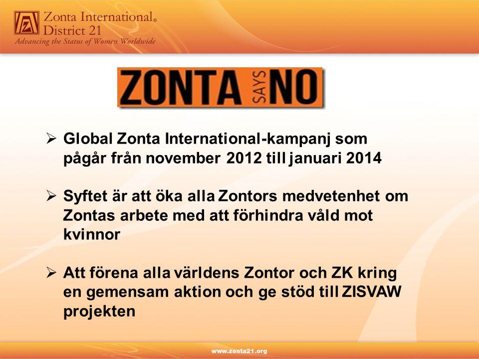  Global Zonta International-kampanj som pågår från november 2012 till januari 2014  Syftet är att öka alla Zontors medvetenhet om Zontas arbete med att förhindra våld mot kvinnor  Att förena alla världens Zontor och ZK kring en gemensam aktion och ge stöd till ZISVAW projekten