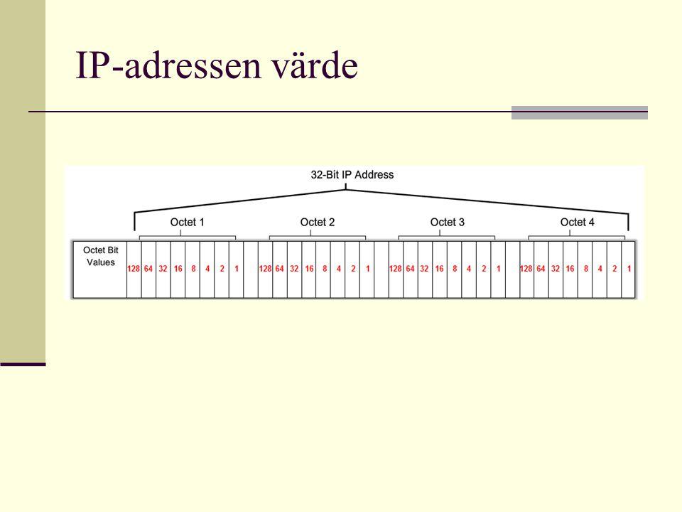IP-adressen värde
