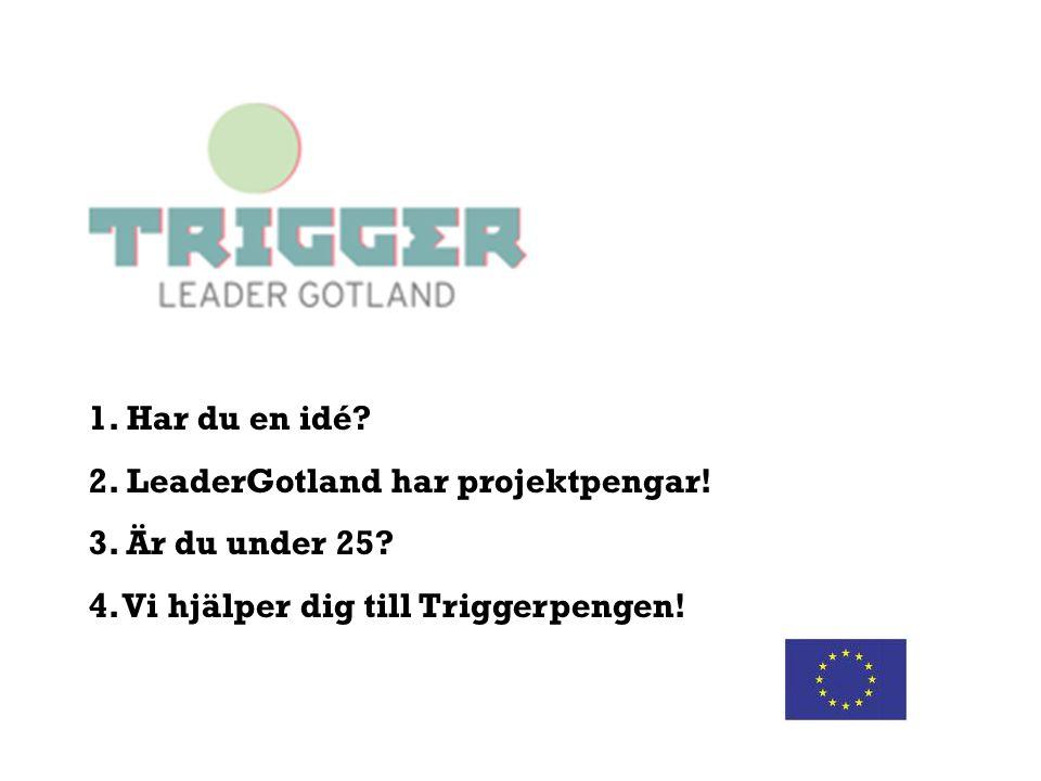 1. Har du en idé? 2. LeaderGotland har projektpengar! 3. Är du under 25? 4. Vi hjälper dig till Triggerpengen!