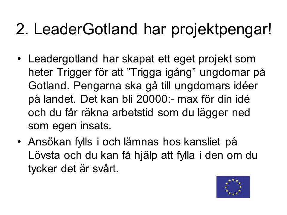 """2. LeaderGotland har projektpengar! Leadergotland har skapat ett eget projekt som heter Trigger för att """"Trigga igång"""" ungdomar på Gotland. Pengarna s"""