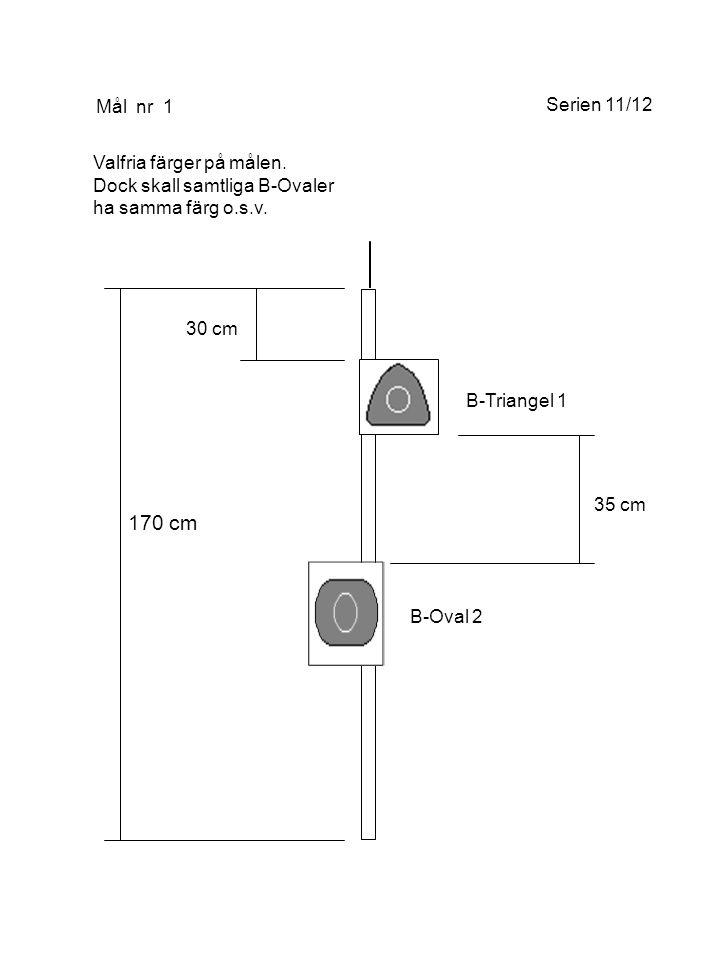 170 cm 20 cm 25 cm Mål nr 2 B-Triangel 1 Valfria färger på målen.