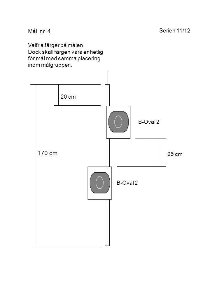 170 cm 20 cm 25 cm Mål nr 4 B-Oval 2 Valfria färger på målen.