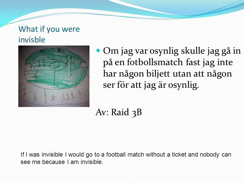 What if you were invisble Om jag var osynlig skulle jag smyga på Finlandsfärjan och åka till Finland utan att någon såg mig.