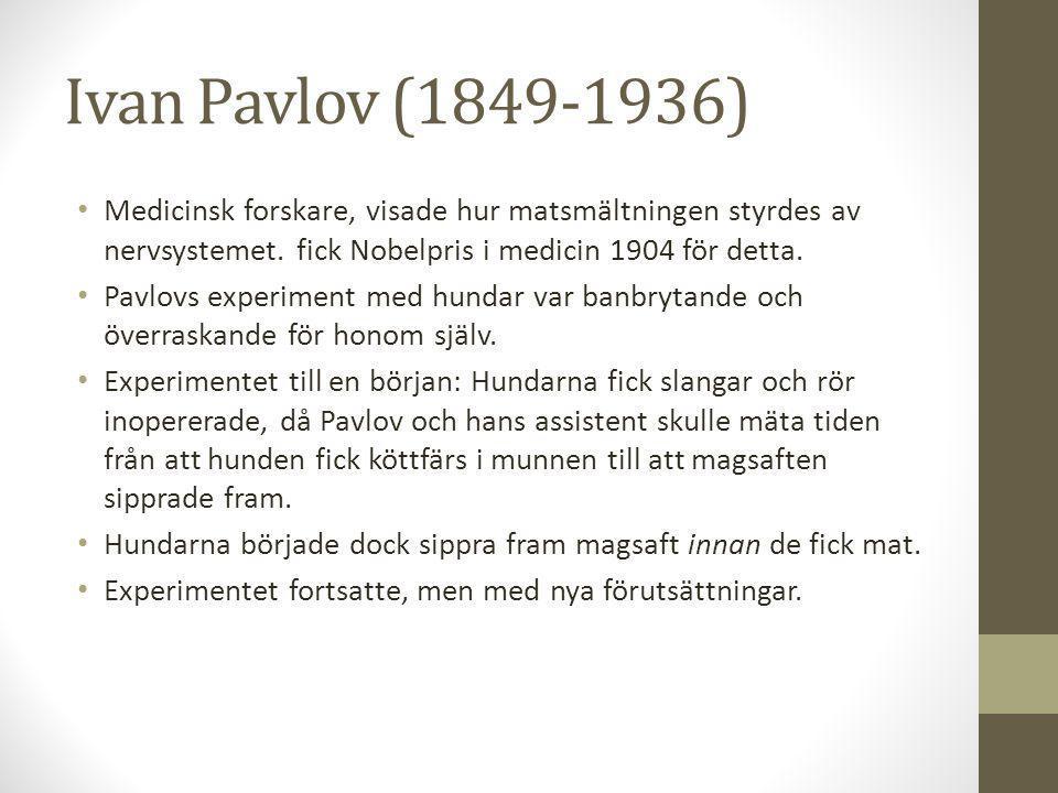 Ivan Pavlov (1849-1936) Medicinsk forskare, visade hur matsmältningen styrdes av nervsystemet.
