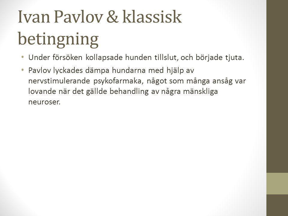 Ivan Pavlov & klassisk betingning Under försöken kollapsade hunden tillslut, och började tjuta.
