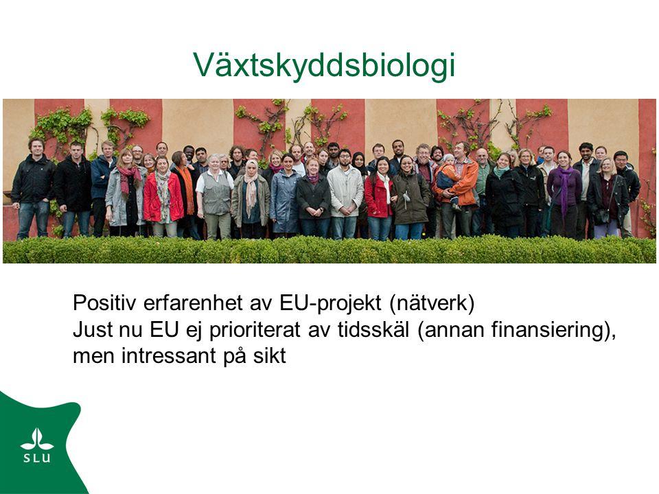 Växtskyddsbiologi Positiv erfarenhet av EU-projekt (nätverk) Just nu EU ej prioriterat av tidsskäl (annan finansiering), men intressant på sikt