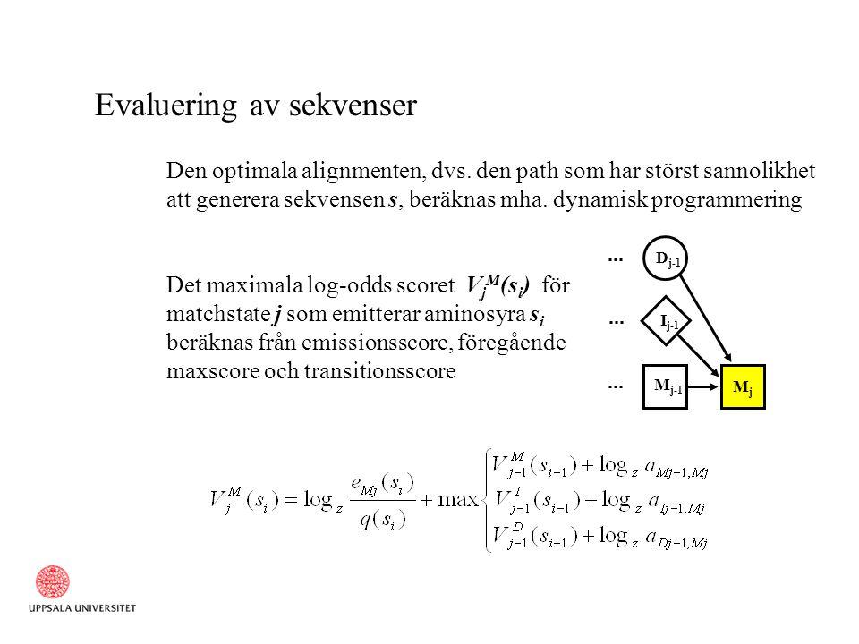 Evaluering av sekvenser Den optimala alignmenten, dvs. den path som har störst sannolikhet att generera sekvensen s, beräknas mha. dynamisk programmer