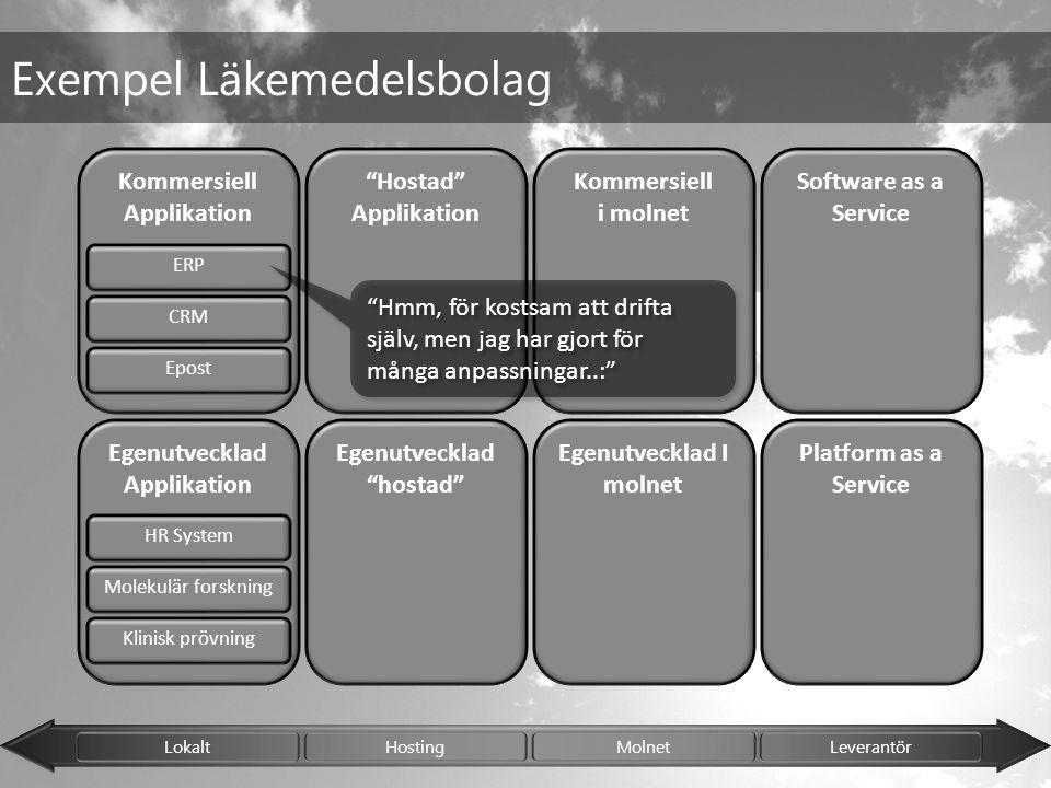 "Lokalt Hosting Molnet Leverantör Kommersiell Applikation Egenutvecklad Applikation Egenutvecklad ""hostad"" ""Hostad"" Applikation Egenutvecklad I molnet"