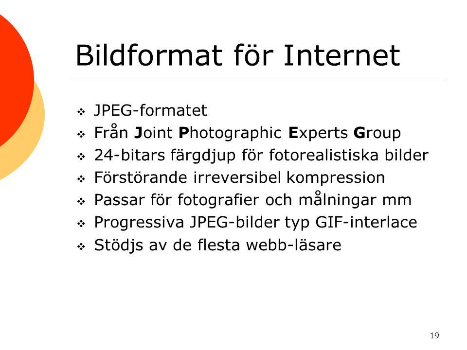 19 Bildformat för Internet  JPEG-formatet  Från Joint Photographic Experts Group  24-bitars färgdjup för fotorealistiska bilder  Förstörande irreversibel kompression  Passar för fotografier och målningar mm  Progressiva JPEG-bilder typ GIF-interlace  Stödjs av de flesta webb-läsare