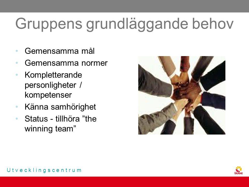 U t v e c k l i n g s c e n t r u m Gruppens grundläggande behov Gemensamma mål Gemensamma normer Kompletterande personligheter / kompetenser Känna sa