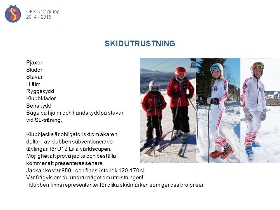 Pjäxor Skidor Stavar Hjälm Ryggskydd Klubbkläder Benskydd Båge på hjälm och handskydd på stavar vid SL-träning. Klubbjacka är obligatoriskt om åkaren